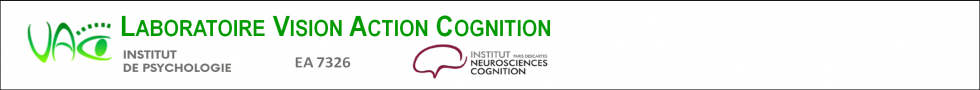 Vision Action Cognition
